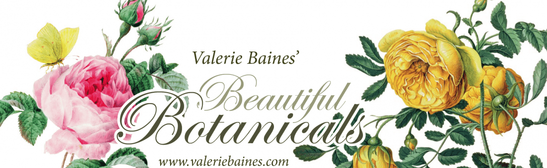 Botanicals Download & Book Giveaway