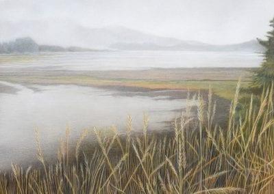 """""""Winter Morning Mist in Bodega"""""""