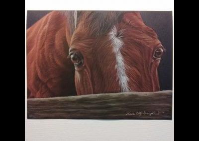 """Isaac's Horse"""