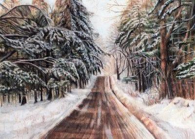 """Northeast Winter"""