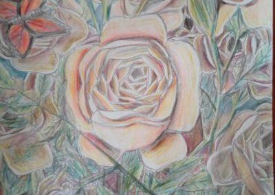 """Celebrate rose"""