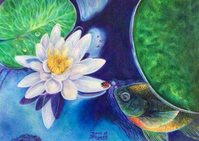 """Lily Pad Pond"""