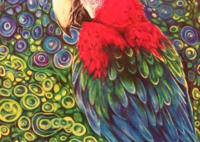 """Parrot Dream"""