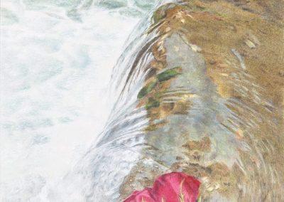 """""""River Roses"""""""
