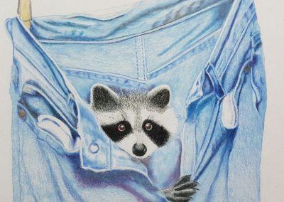 """Raccoon in pants"""