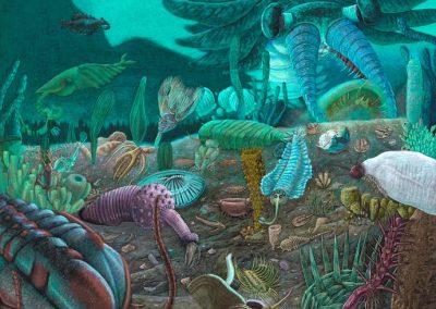 """Surface Zero...The Cambrian Explosion"""