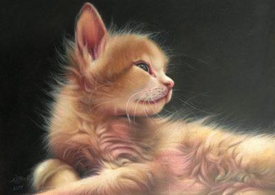"""""""Blossom as a Kitten"""""""