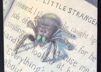 """""""The Little Stranger"""""""