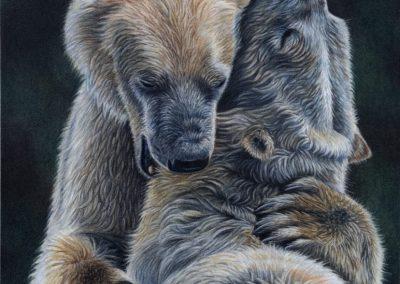 """""""Polar Hug"""""""