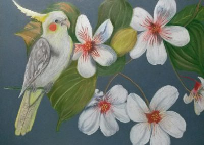 """Cockatiel with Blossoms"""