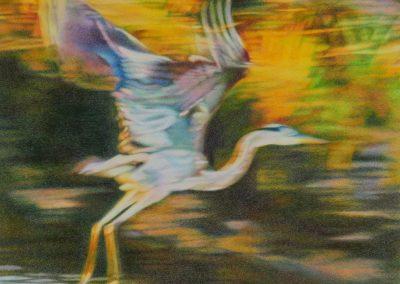 """""""Icarus Rising"""""""