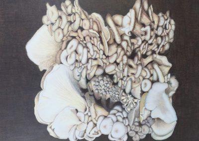 """""""Mushroom Bloom"""""""