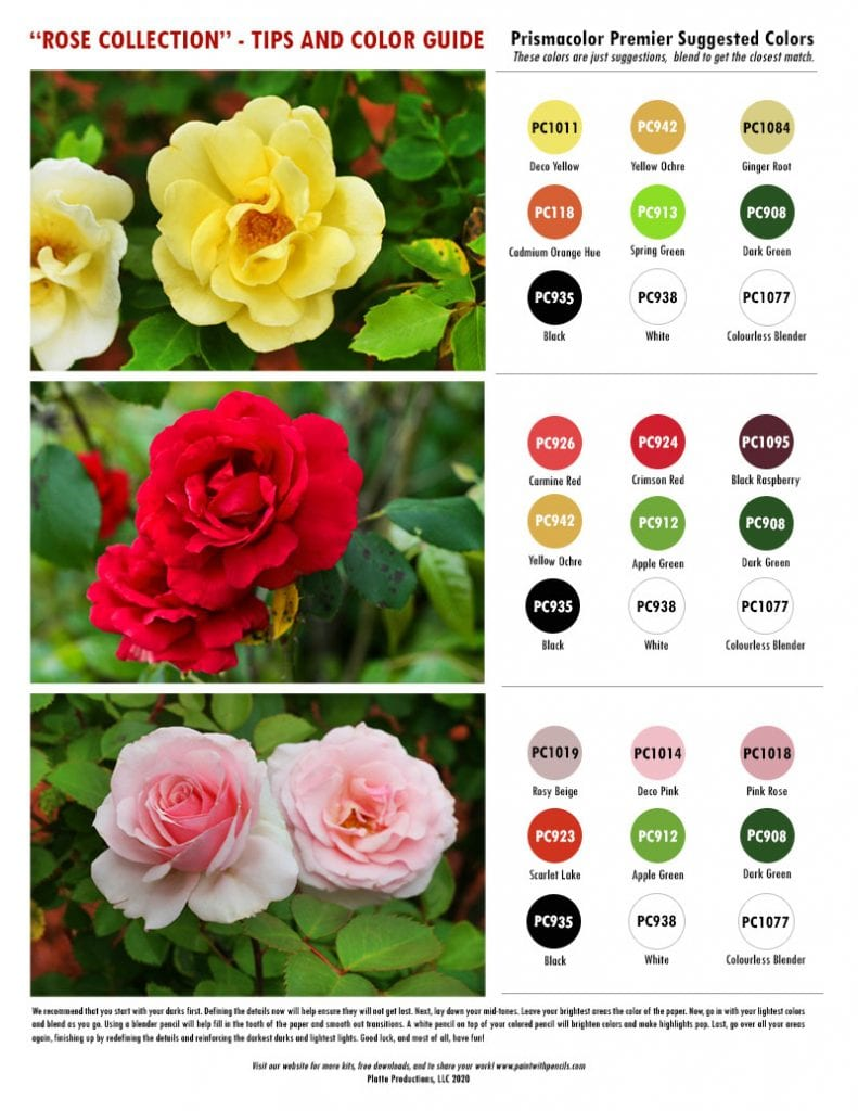 Rose Collection Color Chart